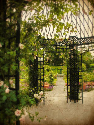 Designs Similar to Rose Arbor by Jessica Jenney