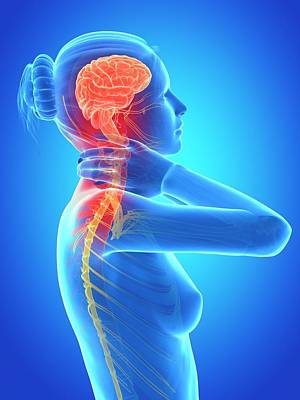 Designs Similar to Human Nervous System