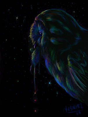 Ducks At Night Art