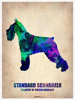 Standard Schnauzer Prints