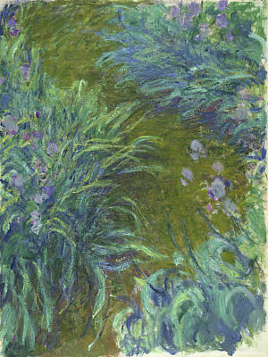 Designs Similar to Irises, 1917 by Claude Monet