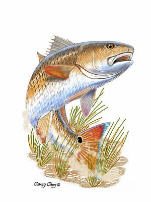 Sea Food Digital Art