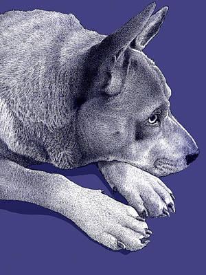 Dog Rescue Digital Art Original Artwork