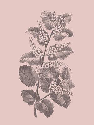 Designs Similar to Cerasus Blush Pink Flower