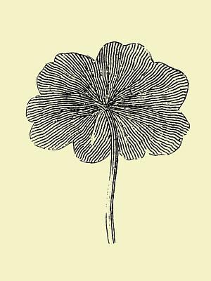 Designs Similar to Floating Leaf II