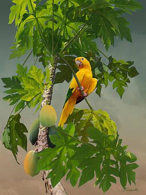 Designs Similar to Golden Parakeet In Papaya Tree