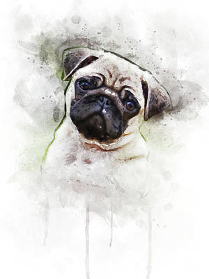 Designs Similar to Pug by Aged Pixel