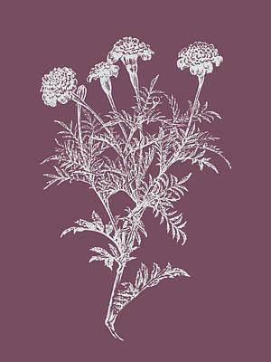 Designs Similar to Tagetes Patula Purple Flower