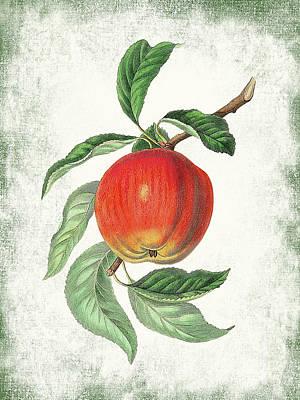 Designs Similar to Vintage Apple Botanical