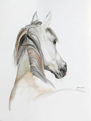 Arabian Horses Paintings