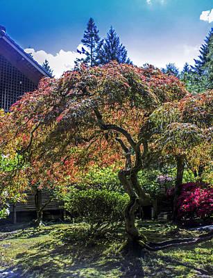 Designs Similar to Japanese Garden
