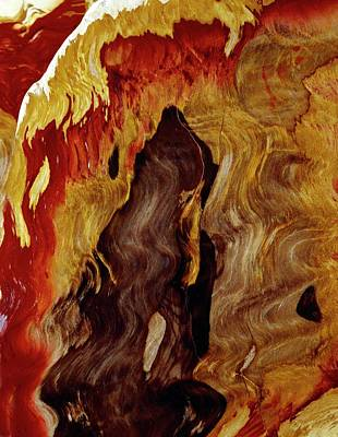 Petrified Wood Art