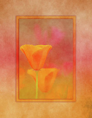 Wild Poppies Digital Art