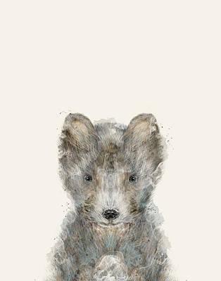 Designs Similar to Little Grey Wolf by Bri Buckley