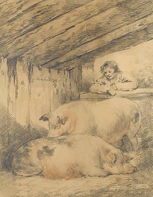 Drawing Of Pig Prints