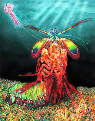 Ghost Shrimp Original Artwork