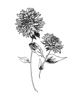 Designs Similar to Sketchbook Flowers On White Iv