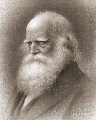 William Cullen Bryant Prints