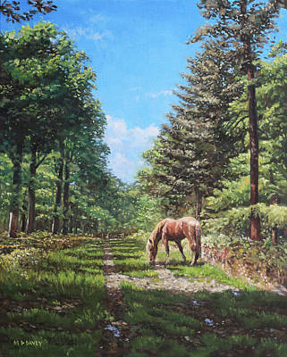 Horse In Forest Paintings