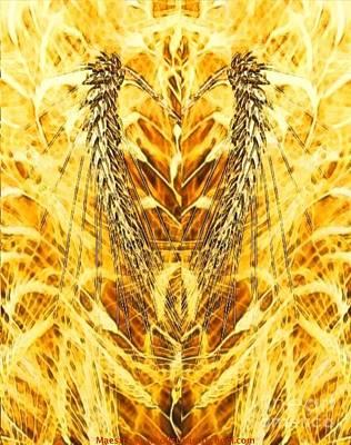 Harvest Deco Digital Art Prints