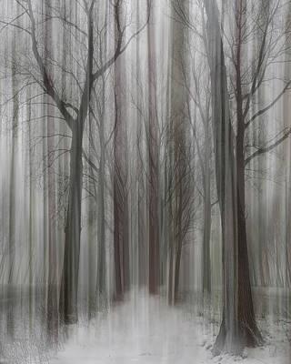 Designs Similar to Winter Walz by Yvette Depaepe