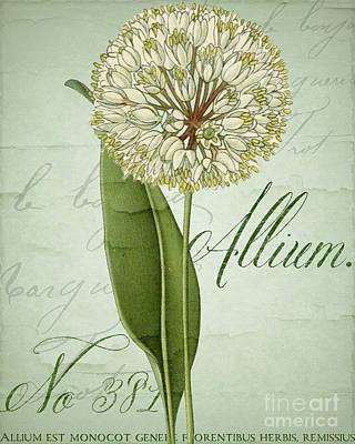 Allium Original Artwork