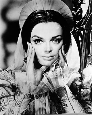 Barbara Steele Art