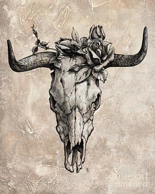 Cow Skull Drawings