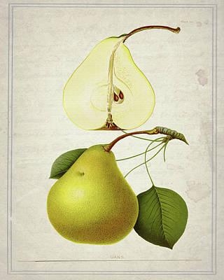 Pear Mixed Media