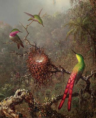 Designs Similar to Hummingbirds, 1871