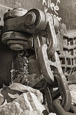 Muskie Photographs