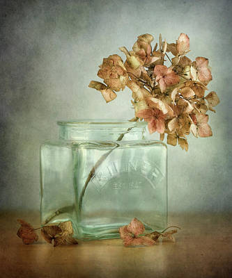 Designs Similar to Hydrangea by Mandy Disher