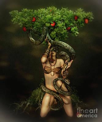 Apple Trees Digital Art Prints