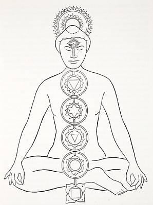 Yoga Asanas Drawings Fine Art America