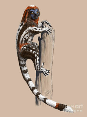 Darwinius Masillae Digital Art