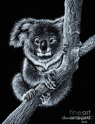Designs Similar to Koala by Senecca Corsetti