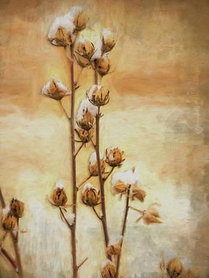 Rose Of Sharon Art
