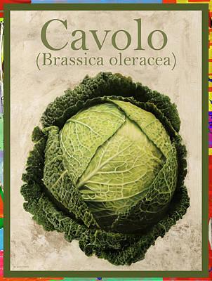 Brassica Oleracea Art