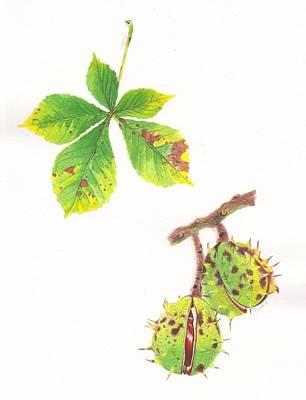 Painting - Horse Chestnut botanical study by Swati Singh