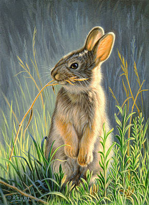 Cottontail Art