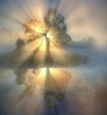Designs Similar to Tree Of Light by Keller