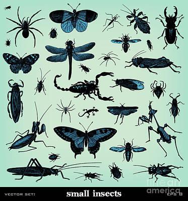 Locusts Art