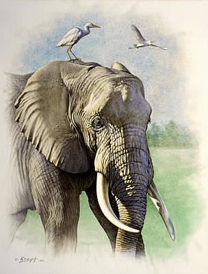 Designs Similar to Amboseli Morning