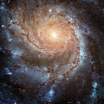 Designs Similar to Spiral Galaxy M101