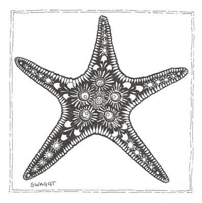 Seashell Drawings Prints