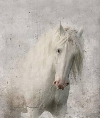 Shire Horse Art