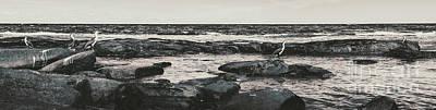 Designs Similar to Kings Beach Rocky Panoramic