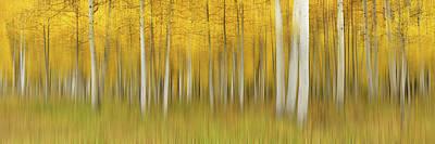 Designs Similar to Autumn Dream by Mei Xu