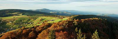 Herbstwald Photographs