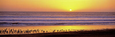 Designs Similar to Sunset Near Santa Cruz Ca